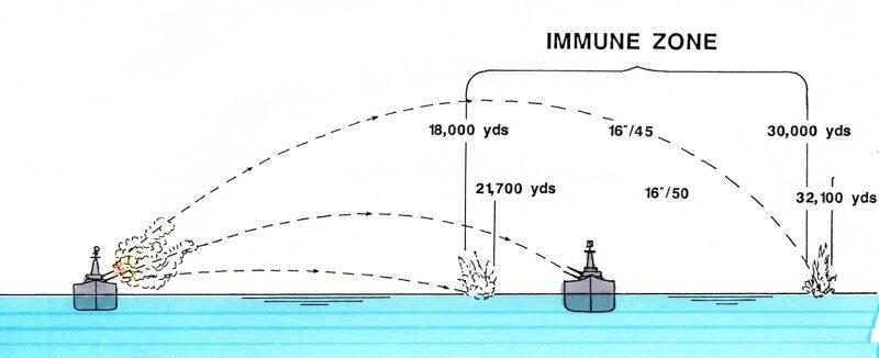 Immunity_zone.jpeg