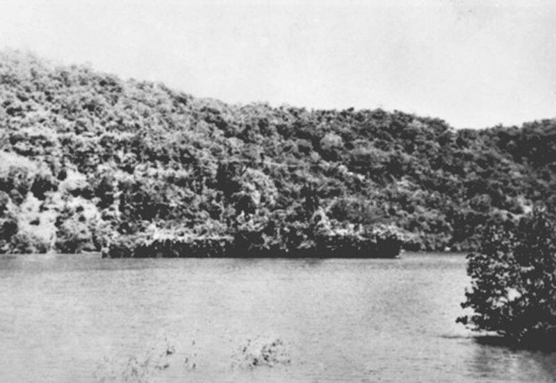 Afbeeldingsresultaat voor dutch ship disguised as an island