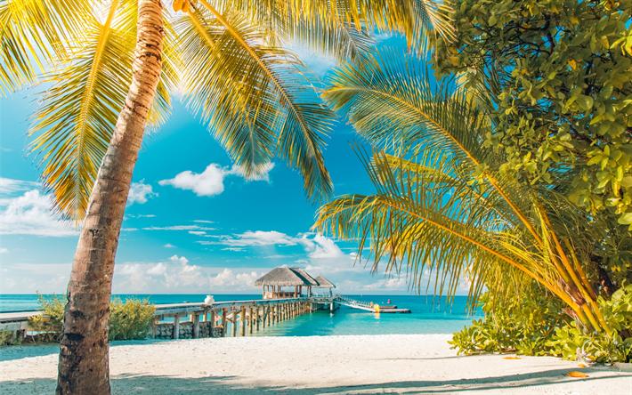 thumb2-tropical-islands-summer-beach-pal
