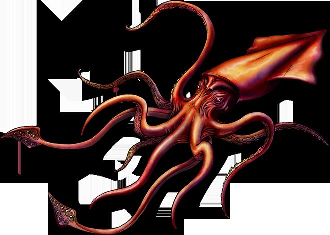 kraken-png-5.png.49f2eb7c841f3bb68eadbd7555b24bb1.png