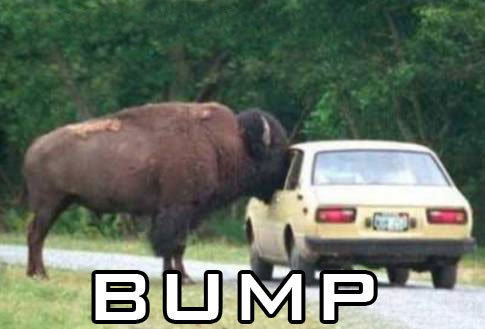 Image result for funny bump