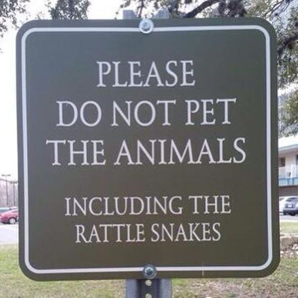 Image result for funny signs - do not feed the animals