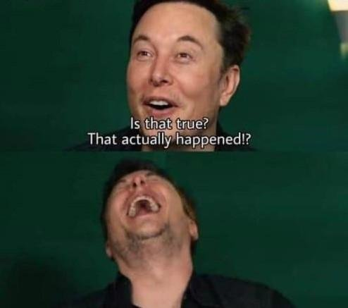 Invest in the New Elon Musk Meme Format! (Format not included in previous  posts) : MemeEconomy