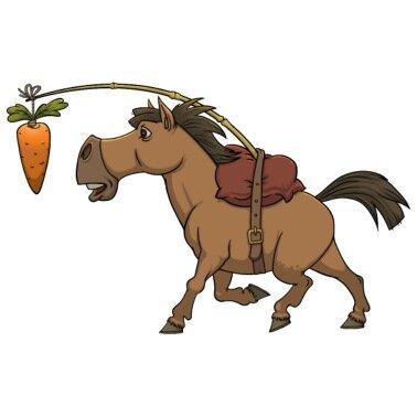 pferd-karotte-moehre-reiten-frauen-polos