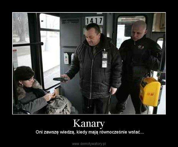 Znalezione obrazy dla zapytania kanary autobus