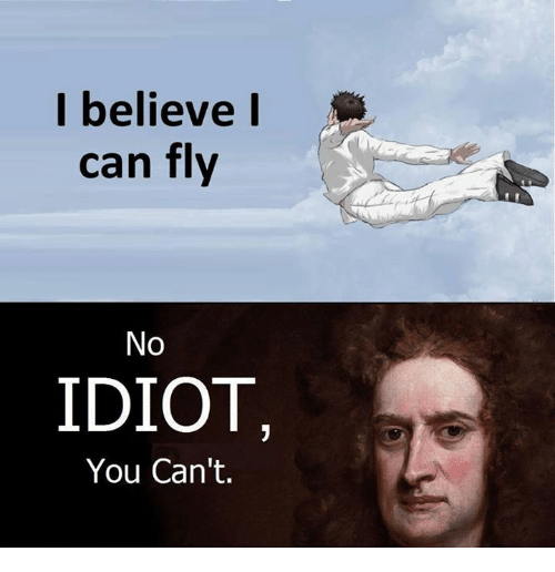 i-believe-i-can-fly-no-idiot-you-cant-22